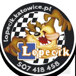 F.H.U Ośrodek Szkolenia Kierowców LOPECIK Dariusz Madej